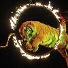 Цирки в Куровском